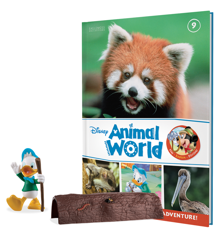 Issue Nine: Red Panda book, Dewey, and a log
